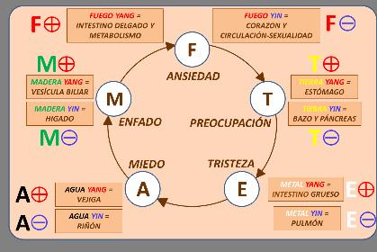 I05--EL-ORIGEN-EMOCIONAL-DE-LAS-ENFERMEDADES_9pcgbzf2
