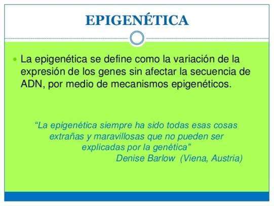 epigentica-4-638